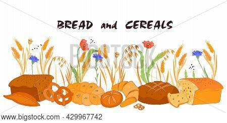 Hand Drawn Bread And Cereals Background. Bakery Production Against Backdrop With Natural Wheat And O