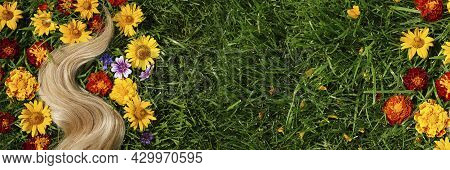 Banner A Lock Of Blond Hair Among The Flowers, On The Green Grass. Hair Health Concept, Natural Ingr