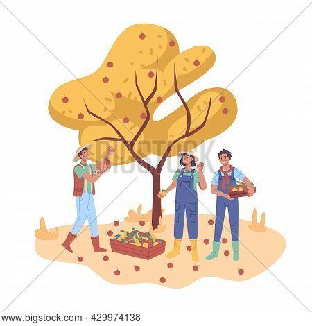 Autumn Harvesting, Happy Farmers Man And Woman Gathering Fruits From Apple Tree, Flat Cartoon Charac