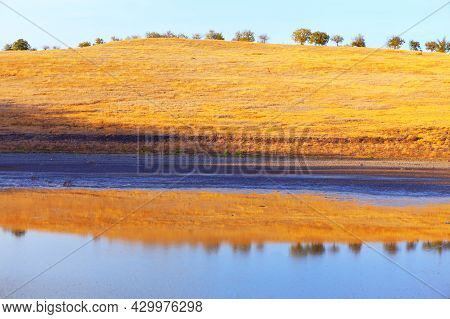 Arid Climate Scenery . Dry Grass On The Hill In The Summer . Nature Reflection In The Pond Water