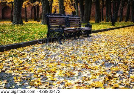 Autumn landscape, autumn in the city park. City park bench in the fall park, yellow fallen leaves on the foreground. Autumn landscape, autumn park, autumn trees, autumn city park, autumn October park