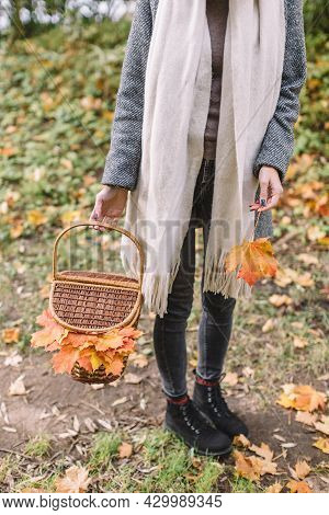 Stylish Woman In Grey Coat, Black Jeans And Beige Scarf Hold In Hand Picnic Basket With Food, Drinks