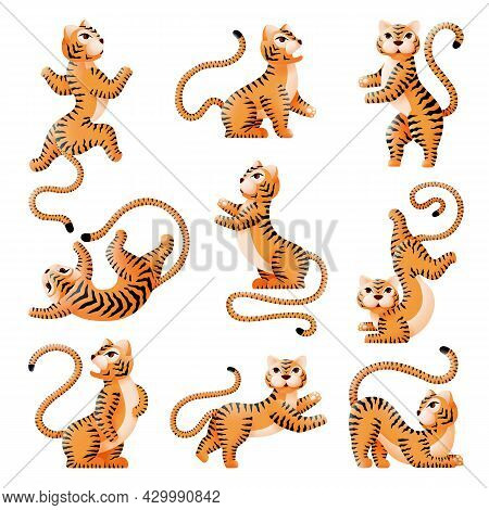 Chinese New Year Tiger. Cartoon Tigers, Asian Festival Symbols. Isolated Wild Cats, Angry And Cute A