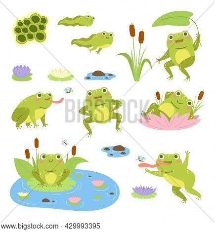 Cartoon Frogs. Cute Water Reptiles, Funny Amphibians In Different Poses, Tadpoles And Toad, Lilies A