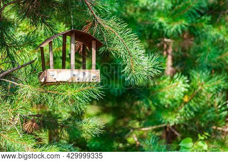 Summer Landscape-bird Feeder In The Form Of A House Hanging On A Tree Against The Background Of Gree