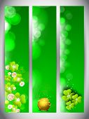 Website banner set for St. Patrick's Day celebration with gold coins pot and shamrock leaves. poster