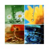 A water drop during the period of four seasons poster
