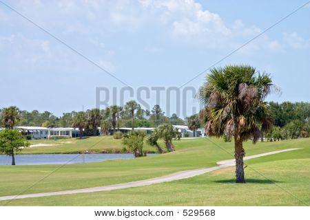 Tropical Golf Course2
