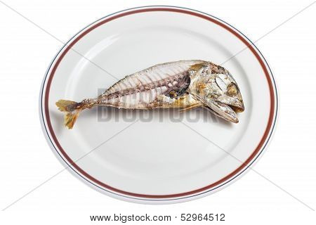 Steamed Mackerel Fish , Isolated With Clipping Path.