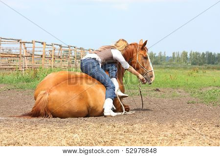 Young Blonde Woman Sitting On The Lying Horse