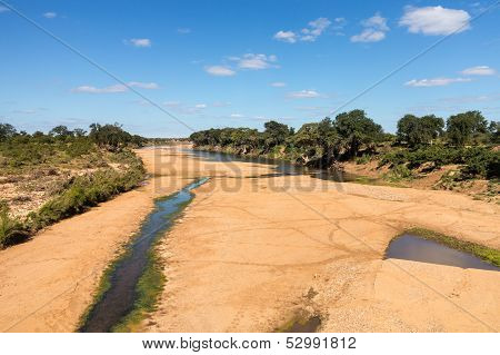 Dry River Bed In Kruger National Park