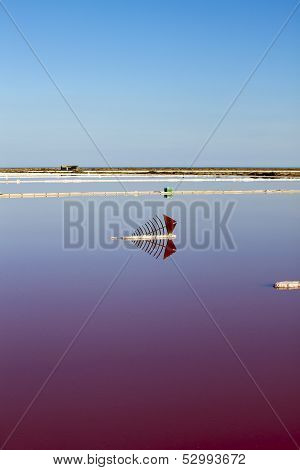View Over Water Surface Of A Salt Basin