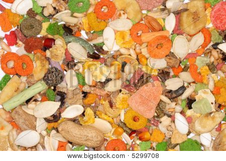 Food For Rodents
