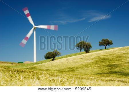 Moving Wind Turbine In Golden Field