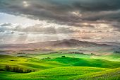 Tuscany rural sunset landscape. Countryside farm cypresses trees green field sun light and cloud. Volterra Italy Europe. poster