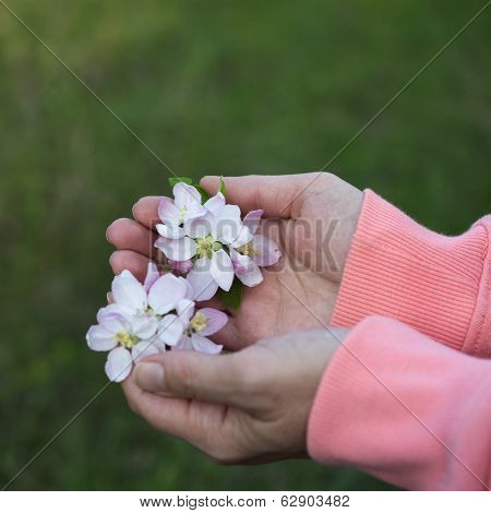 Woman Holding Spring Blossoms