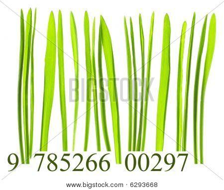 Bar Code Made From Grass Blades