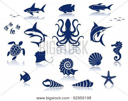 Marine life icon set. Isolated against a white background with reflections