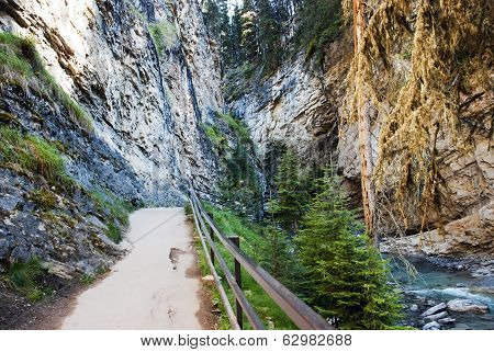Johnston Canyon  Walkway