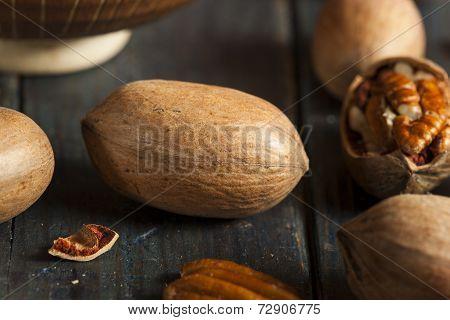 Raw Organic Whole Pecans