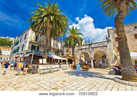 Town Of Hvar Palm Promenade