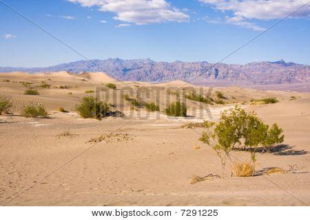 Panamint Valley, California