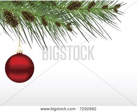 Red Christmas Bauble In Branch