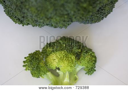 Brocolli With Brocolli Cloud