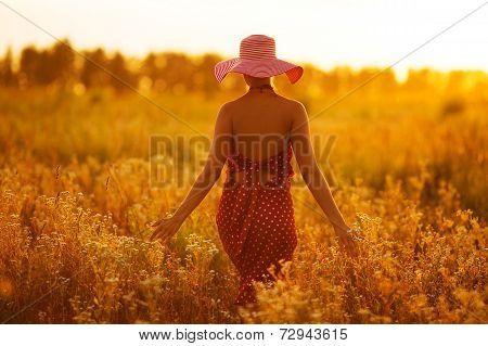 Woman In A Hat Walking Through Fields Of Flowers