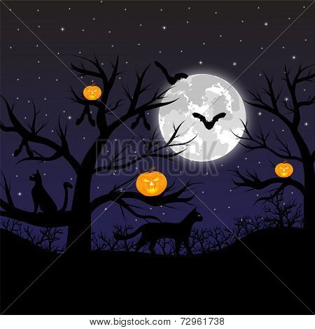 Forest with pumpkins, bats and cats at the full moon