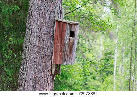 Old birdhouse