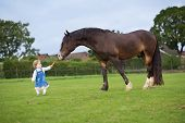 Cute Little Baby Girl Feeding A Big Horse On A Ranch In Autumn poster
