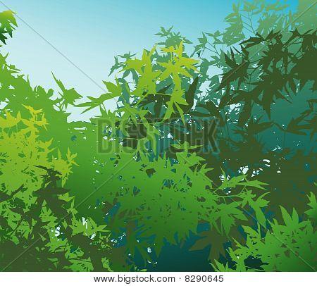 Colorful landscape of summer foliage - Vector illustration