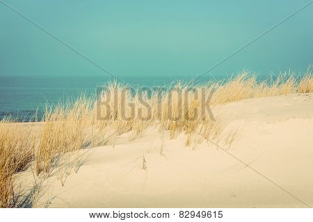 Calm sunny beach with dunes and grass. Baltic sea in the background. Vintage