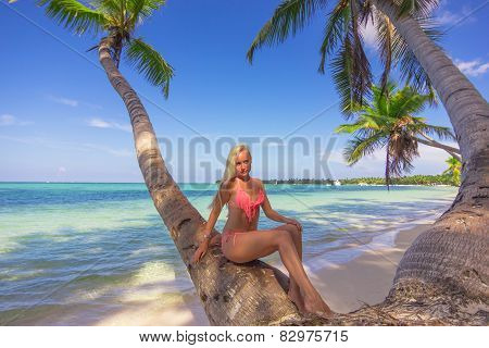 Beautiful Girl and tropican landscape