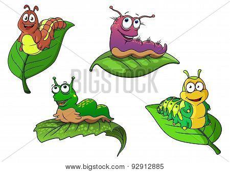 Cute cheerful cartoon caterpillars characters