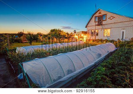 Raised Beds In Vegetable Garden