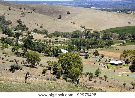 Barossa Valley Landscape
