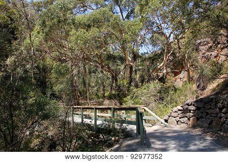 Morialta Conservation Park 3