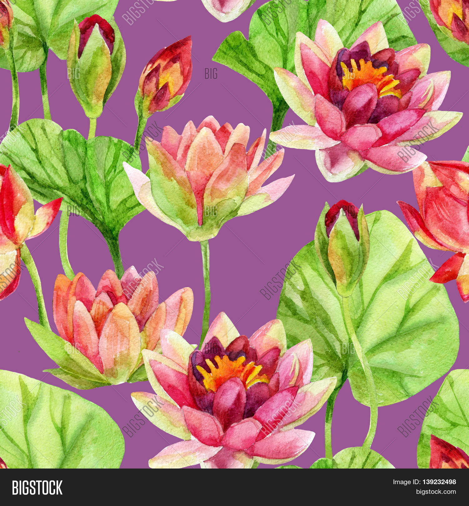 Hand Painted Lotus Image Photo Free Trial Bigstock