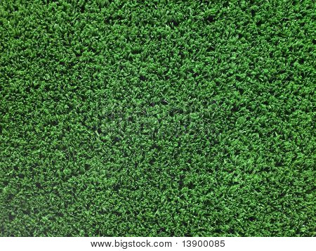Artificial Turf Background poster