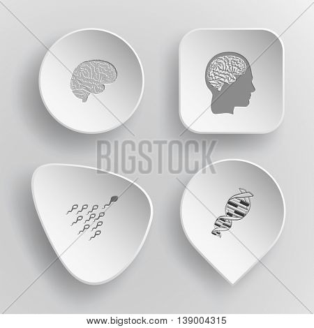 4 images:  human brains, spermatozoon, DNA. Medical set. White concave buttons on gray background. Vector icons.
