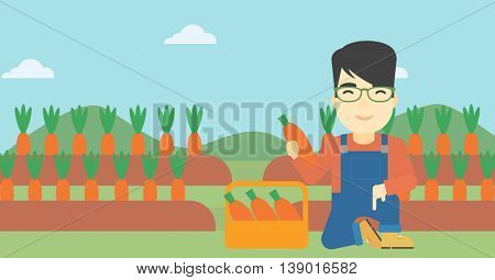 An asian farmer collecting carrots in basket. Young farmer holding a carrot on the background of field. Vector flat design illustration. Horizontal layout.