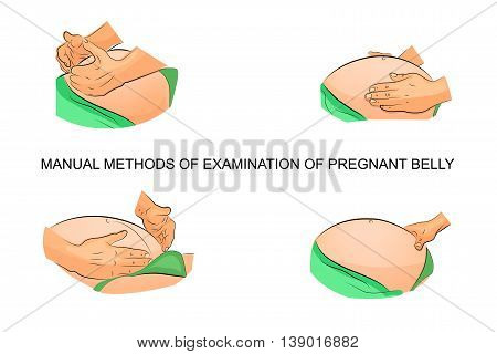 illustration of manual methods of examination of the position of the fetus in the uterus