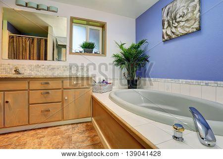 Simple Yet Elegant Bathroom Interior With Tile Trim Bath Tub