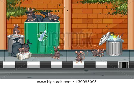 Scene with rats in the trashcans illustration
