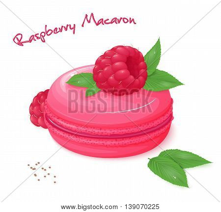 vector illustration of realistic isolated raspberry macaron with fresh ripe raspberry and leaves.
