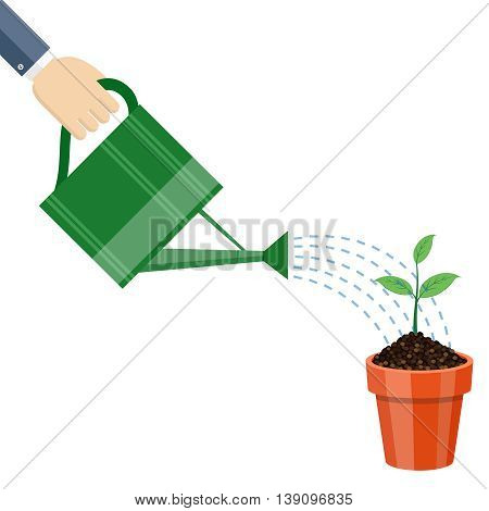 Watering can and plant in the pot. Growing idea concept. Vector illustration.