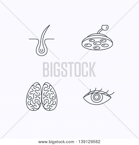 Eye, neurology brain and surgical lamp icons. Trichology linear sign. Flat linear icons on white background. Vector poster