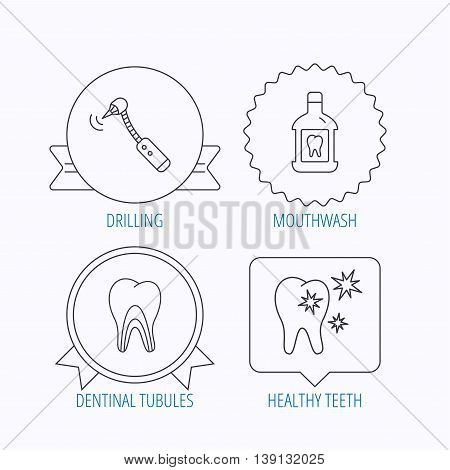 Tooth, mouthwash and dentinal tubules icons. Healthy teeth, dentinal tubules linear sign. Award medal, star label and speech bubble designs. Vector
